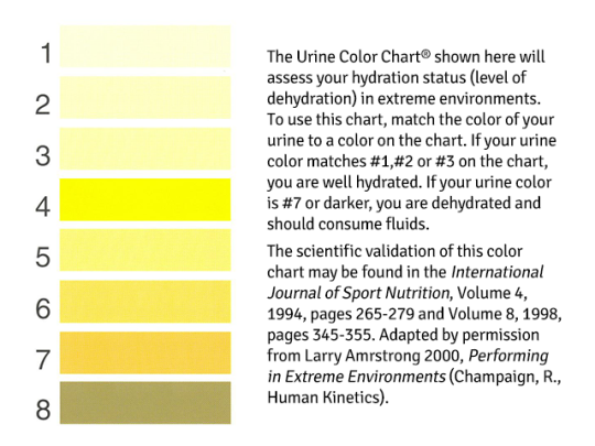 Urine color chart. Armstrong LE